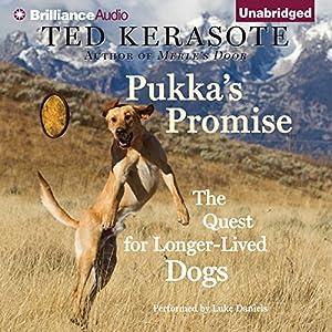 Pukka's Promise Audiobook