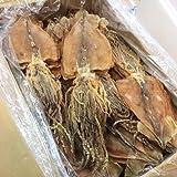 Cheap Japanese SURUME 1kg(25-30p) Dried Squid Hokkaido Japan Additive-free Healthy food