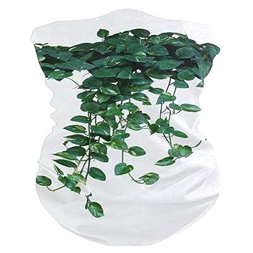 Reopx Plantas trepadoras Cintas Cabeza elásticas Verdes Envoltura ...