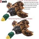 Running Pet 2 Pcs Pet Dog Toy Puppy Dog Chew Toy with Cartoon Plush Squeaking Duck Style for Small Medium Dog or Cat