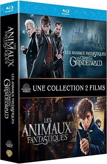 Les Crimes de Grindelwald Italia Blu-ray: Amazon.es
