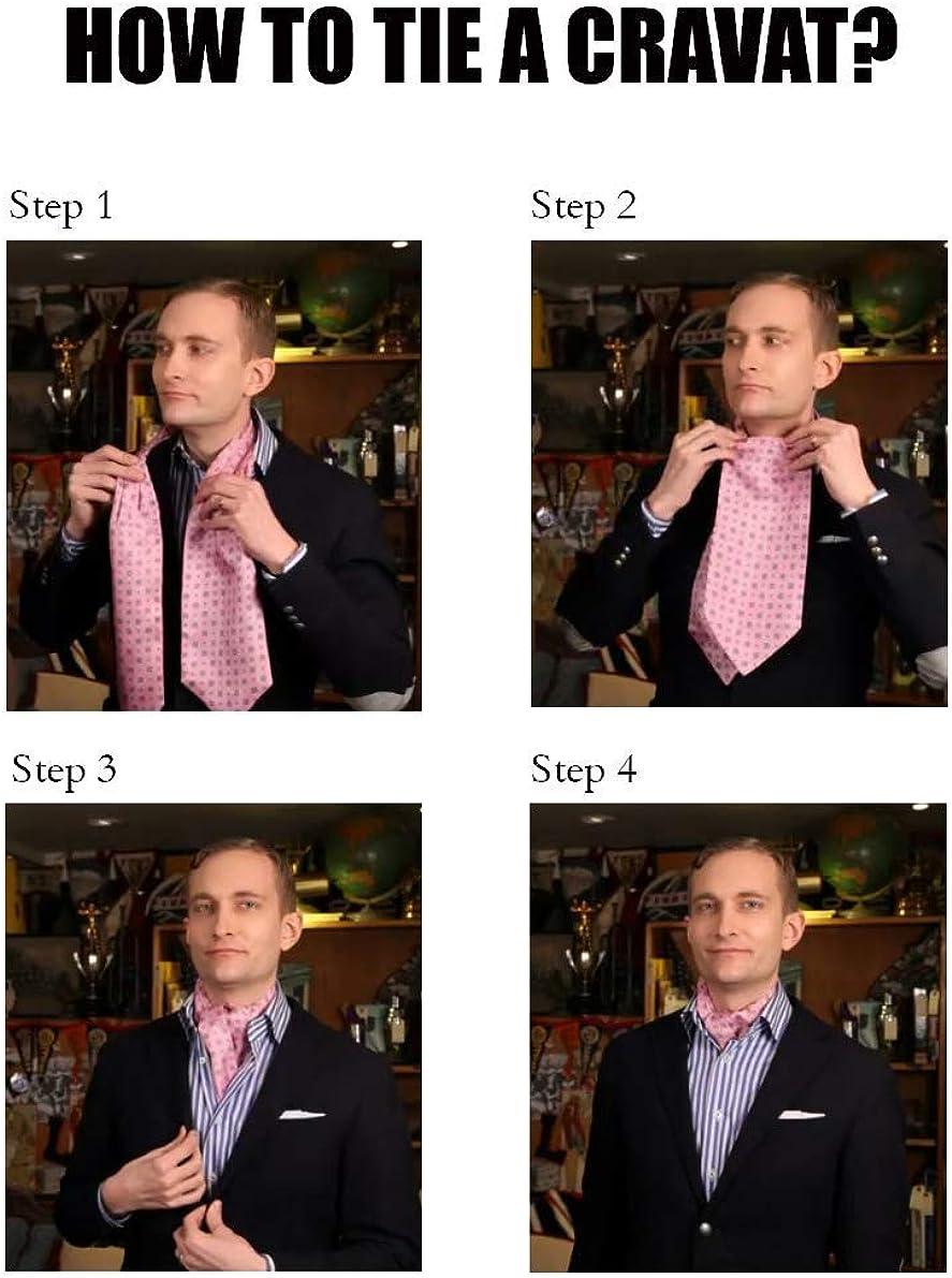 STTLZMC Corbatas para Hombre Paisley Jacquard Floral Seda Pañuelo ...