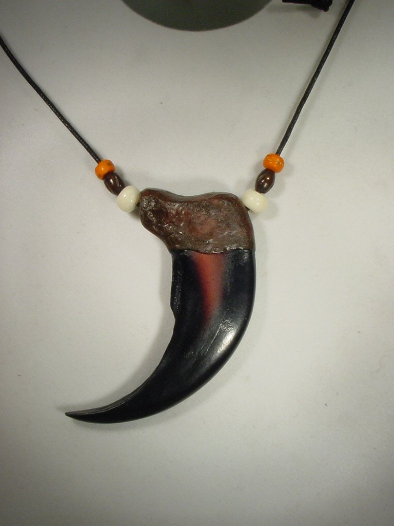 Amazon 3 12 grizzly bear claw resin replica necklace pendant amazon 3 12 grizzly bear claw resin replica necklace pendant everything else mozeypictures Image collections