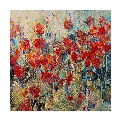 Trademark Fine Art Red Poppy Field Ii by Tim Otoole, 14x14-Inch