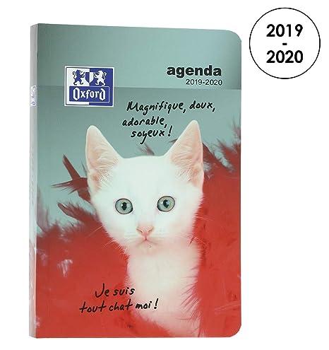 Amazon.com: Oxford Funny Pets 2019-2020 Daily School Diary 1 ...