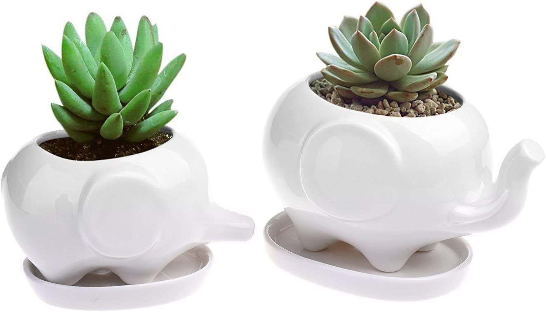 Koreyoshi 2 Pcs Elephant Plant Window Boxes with Tray Cute Elephant Flower Pot,Modern White Ceramic Succulent Planter Pots Tiny Flower Plant Containers Style 1