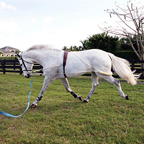 Pessoa Pony (Pessoa Lunging System - Color:None Size:Pony)