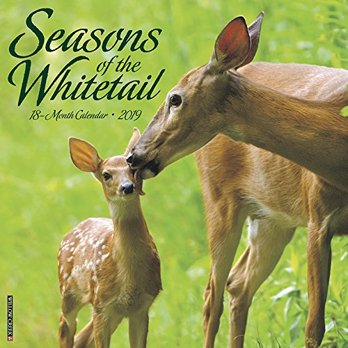 Seasons of the Whitetail 2019 Wall Calendar