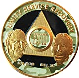 28 Year Founders Camo Black and Gold Plated AA Medallion Chip