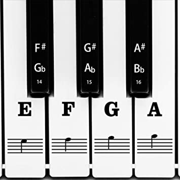 KEYNOTES PIANO MUSIC NOTE STICKERS for 49-KEY or 61-KEY KEYBOARD LESSON LINKS