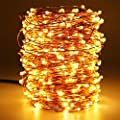 Battery Operated String Lights, Homesweety 33ft 100 LED String Lights Dimmable with Remote Control for Outdoor, Bedroom, Patio, Christmas, Wedding (Waterproof, Copper Wire Lights, Warm White)