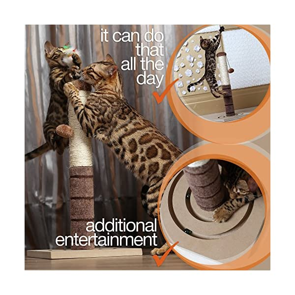4 Paws Stuff Tall Cat Scratching Post Cat Interactive Toys - Cat Scratch Post Cats Kittens - Plush Sisal Scratch Pole Cat Scratcher - 22 inches (Beige) 3