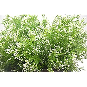 Artificial Fake Flowers Plants, 4pcs Outdoor UV Resistant Faux Green Greenery Fake Plastic Flowers Shrubs Plants Indoor Outside Hanging Planter Home Garden Wedding Décor (White) 2
