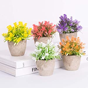 Artificial Plants in Pot for Home Decor Indoor, Small Mini Realistic Fake Plants with Colour for Decoration - Set of 6