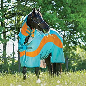 AMIGO Evolution Fly Sheet 81 Aqua/Orange 5