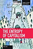 The Entropy of Capitalism (Studies in Critical Social Sciences)