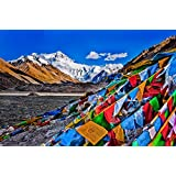 Tibetan Buddhist Prayer Flags -Wind Horse 14cm x 17cm (25 flags)-5M Total Length by Hugos Destiny