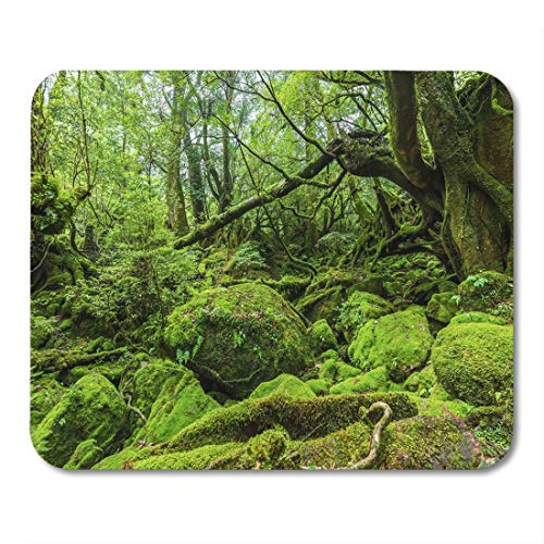 Emvency Mouse Pads Mossed Forest in Shiratani Unsuikyo Ravine Yakushima Island Japan Mouse Pad for notebooks, Desktop Computers mats 9.5