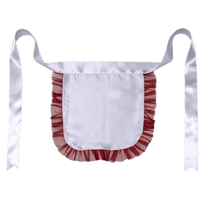 cc6abc5b8d1d1 Amazon.com: Nurse or Maid Apron with Red Lace Ruffles ~ Halloween ...