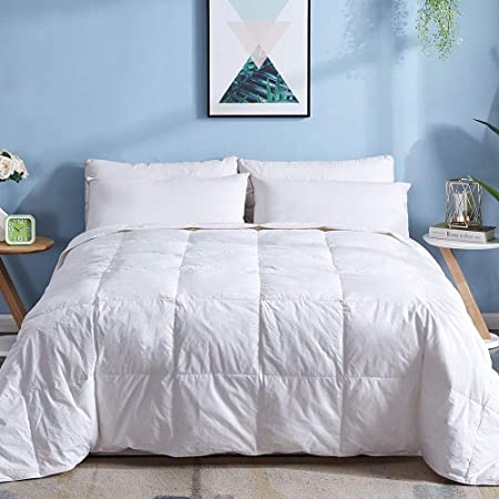 Ellison Great Value Sophia Stripe 8 Piece Queen Bed in a Bag Blue