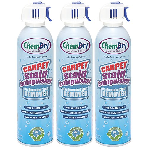 Highest Rated Carpet Cleaners