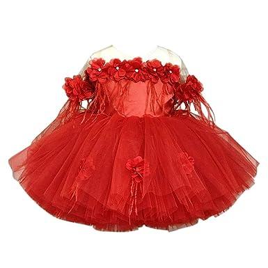 Livoral - Falda de Tul para niña, diseño de Princesa Rojo 5 años ...