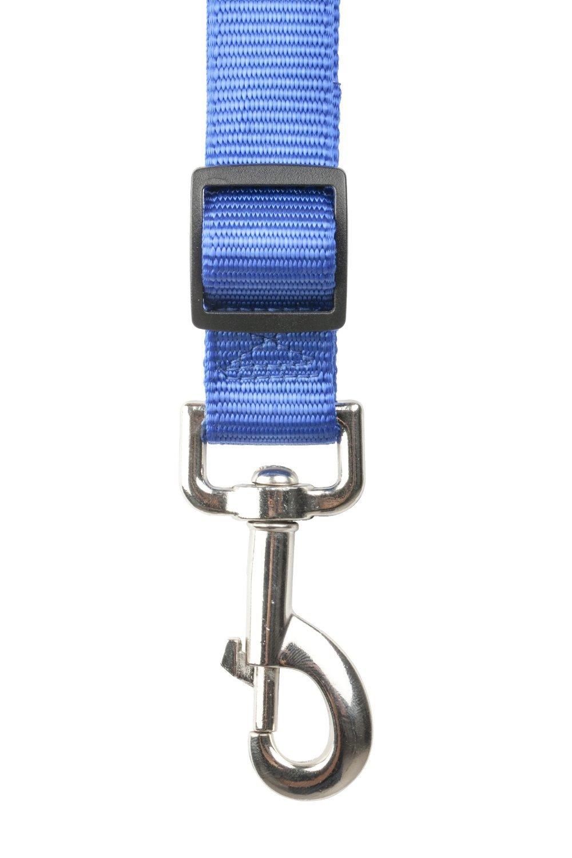 RoadRunner Running Dog Leash Hands Free – Including LED Light. Great for Walking, Running, Biking and Jogging (Black, Red, Blue, Orange, Pink). (Blue)