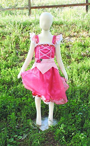 Girls 6-8 Pink Sleeping Beauty dress up apron by Fru Fru and Feathers Costumes & Gifts