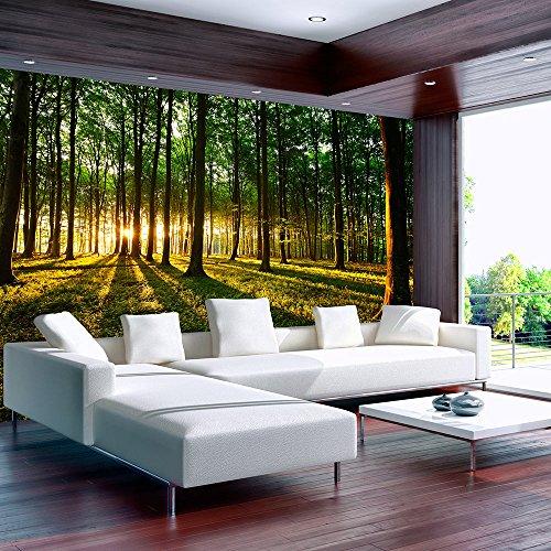 Vlies Fototapete 250x175 cm - 3 Farben zur Auswahl - Top - Tapete - Wandbilder XXL - Wandbild - Bild - Fototapeten - Tapeten - Wandtapete - Wand Wald Sonnenschein Bäume Natur Landschaft c-B-0027-a-b