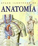 Anatomía, Adriana Rigutti and Manuela Martin, 8430534784