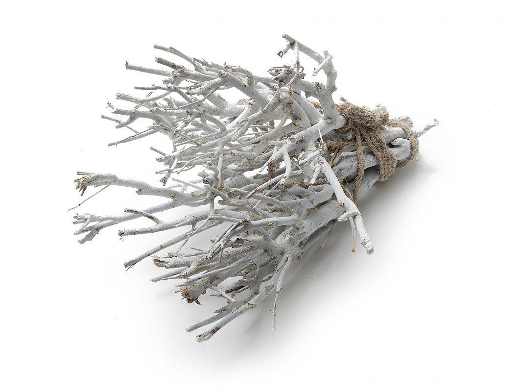 NaDeco Dekobündel John Branch Weiß ca. 35cm 0, 5kg | Dekozweige | Dekoäste | Deko Bündel | Holzdeko | Dekobäume