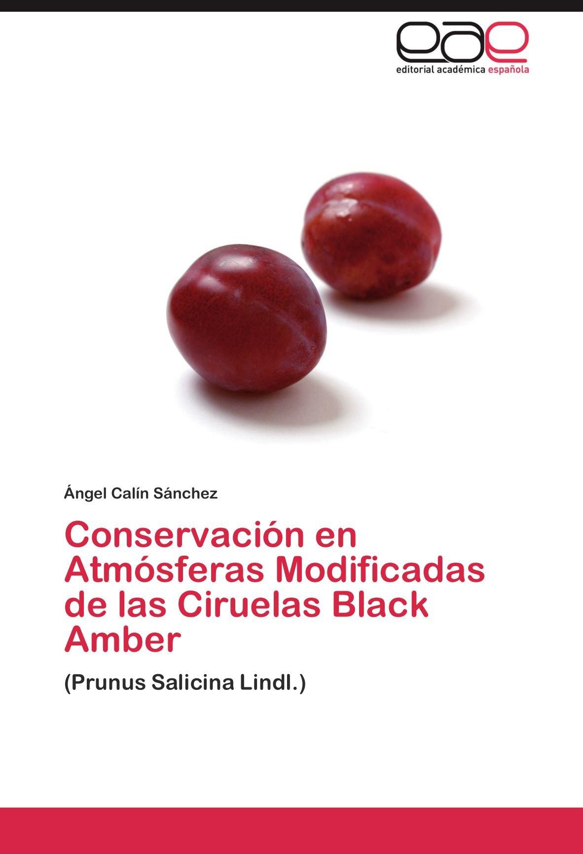 Conservación en Atmósferas Modificadas de las Ciruelas Black Amber: (Prunus Salicina Lindl.) (Spanish Edition) PDF Text fb2 book