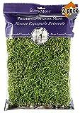 Super Moss 26912 Spanish Moss Preserved, Grass, 8oz (200 Cubic inch) (2)