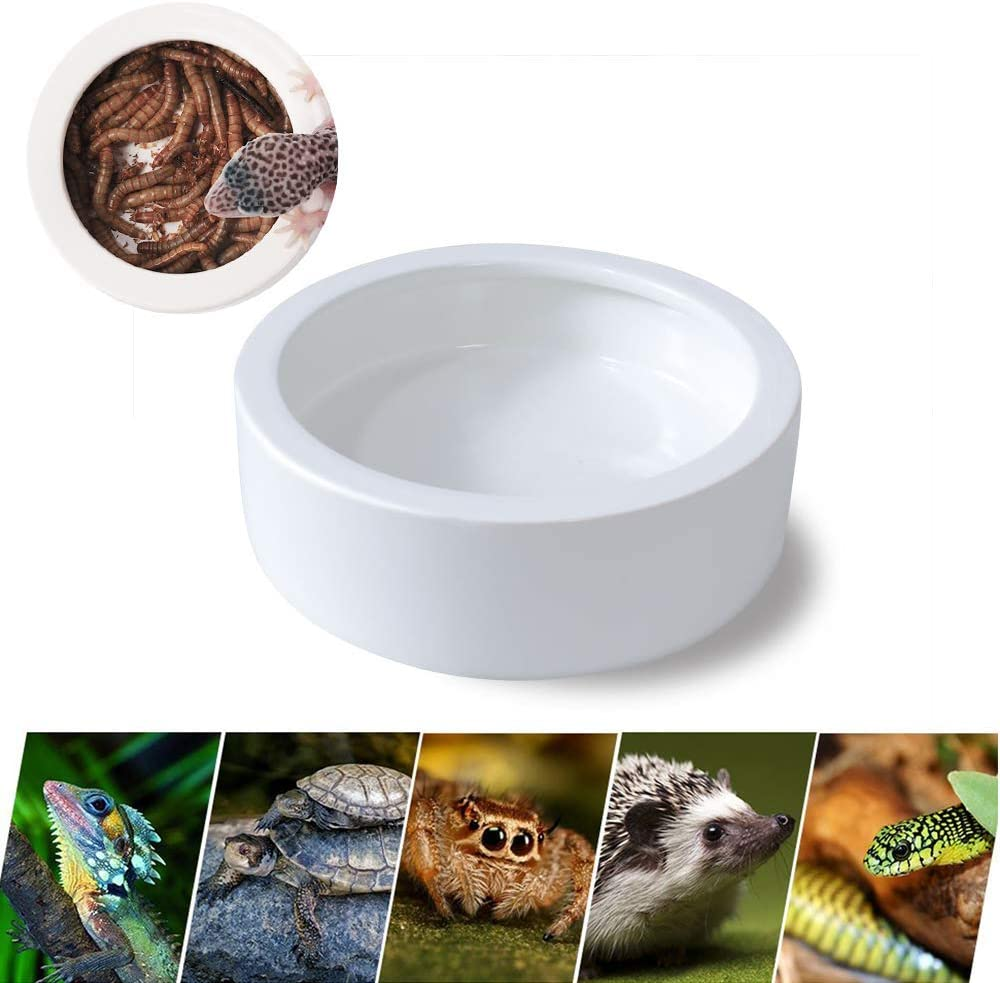 Mein HERZ Alimentador de Cerámica para Reptiles, Diseño Anti-Escape de Gusanos de Pan, Tazón de Agua para Mascotas, Adecuado para Lagartos, Gecos, Serpientes, Ranas, Arañas, Tortugas y Otros Reptiles