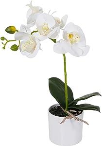 LIVILAN White Orchid Artificial Flower Arrangement with Decorative vase, Lifelike Fake Flower Vivid Potted Plant