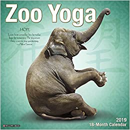 Amazon.com: Zoo Yoga 2019 Wall Calendar (0709786046966 ...