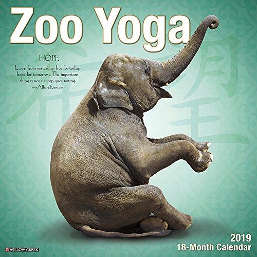 Zoo Yoga 2019 Wall Calendar -