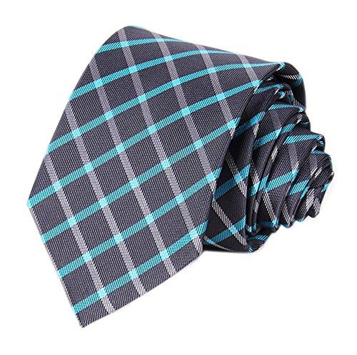 ey Checks Designer Inspired Tie Necktie Pretty Birthday Gift ()
