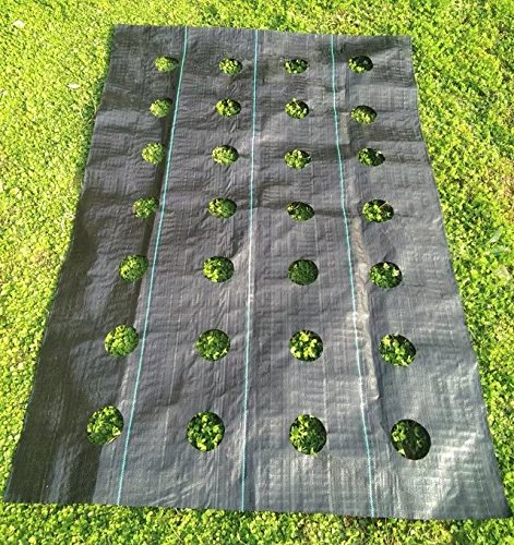 Agfabric Easy-Plant Weed Block for Raised Bed Outdoor Garden Weed Rugs Garden mat 3.0oz, 3'x12',with Planting Hole Dia 3'' by Agfabric (Image #2)