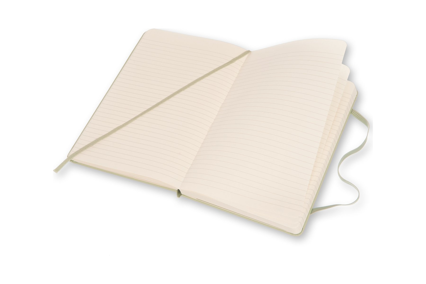 Moleskine Classic Notebook, Large, Ruled, Willow Green, Hard Cover (5 x 8.25) by Moleskine (Image #4)