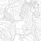 creative haven horses color by number coloring book creative haven coloring books. Black Bedroom Furniture Sets. Home Design Ideas
