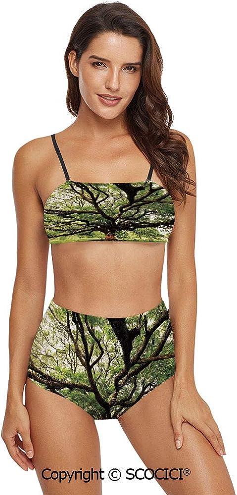 SCOCICI Bikini Swimsuit Swimwear The Largest Monkey Pod Tree in Thailand Easter