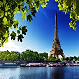 Laeacco Vinyl Photo Background 8x8ft Photography Background Backdrop Scenic Theme Water and Leaves Eiffel Towers View Photo Studio Props