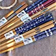 Set of 5 Pairs Natural Bamboo Painted Chopsticks Reusable