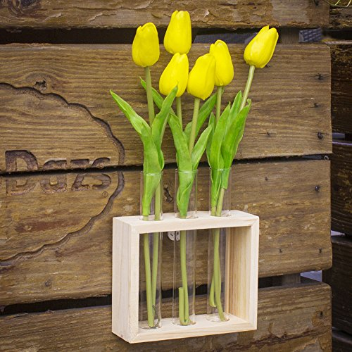 Ivolador Wall Mounted Hanging Planter Test Tube Flower Bud Vase Tabletop Glass Terrariumin
