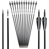 Musen 28 Inch/30 Inch Carbon Archery Arrows, Spine 500 with Removable Tips, Hunting and Target Practice Arrows for…