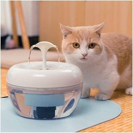 Warm Home Máquina Autónoma De Agua para Mascotas, Filtro ...