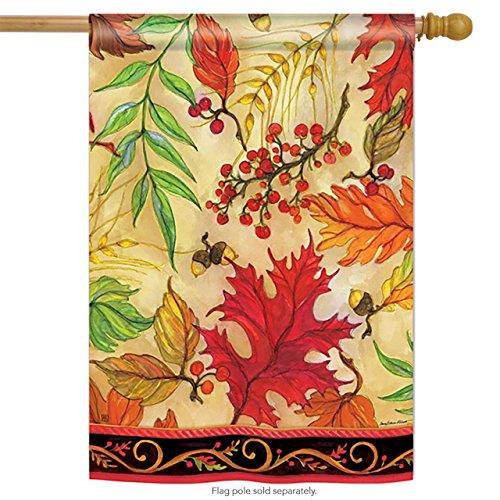 BreezeArt Blaze of Glory 28″ X 40″ House Flag – Fall Leaves For Sale