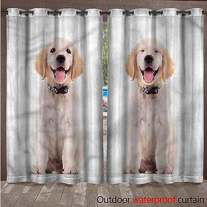 Amazon Com Blountdecor Golden Retriever Outdoor Door Curtain Happy