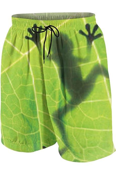 Hkany Dinosaurs Teenager Boys Beachwear Beach Shorts Pants Board Shorts